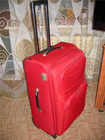 Чемоданы-дома интересные рюкзаки для школы